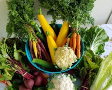 Just how to utilize seasonal veggies this Winters months?